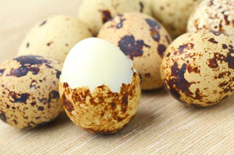 Срок хранения вареных перепелиных яиц